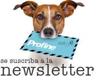 newsletter_es