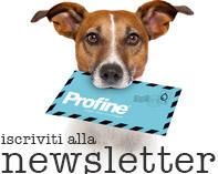newsletter_it